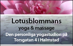 Lotusblommans yoga & massage